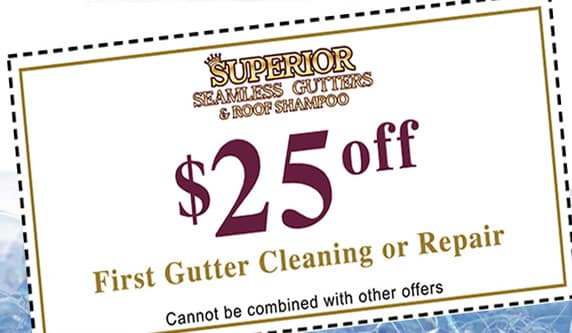 $25 off first gutter cleaning