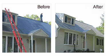 Roof Cleaning Before and After Photo - Superior Seamless Guters