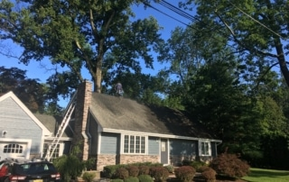 Roof Cleaning of a Home in Bergen County